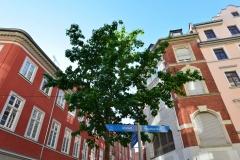 Architektur in der Unterstadt von Aschaffenburg
